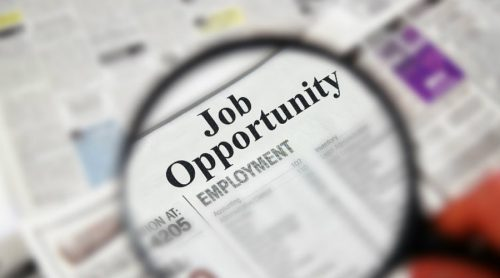 Govt job application